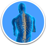 Spine Surgery - Orthopaedic Surgical Specialist